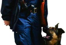 Goltvizen Hof Bodo – meie politseinike oma Rex