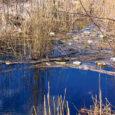 Suurt lahte ja Linnulahte ühendav kanal Kuressaare lähistel on muudetud voolavaks prügilaks. Kaunist loodusest mitte hoolivad kalastajad on loopinud jõekesse kõikvõimalikku prahti tühjaksjoodud džinni- ja õllepurkidest kuni plastkarpideni ja kilekottideni.