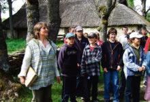 Vikil õppisid õpilased puid tundma