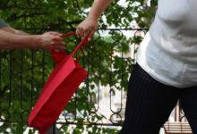 Kaagid kipuvad kotte varastama