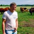 GoBusi Saaremaa osakonna harrastuspõllumehest juhile Margus Männikule kuulub Saaremaa üks suuremaid lihaveisekarju.