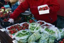 Maasika hind langes