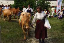 Saarte vissivõistluse hinnatumad lehmad Eesti punane kari