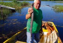Kalur püüdis eksikülalise