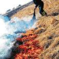 """Neljapäeval kell 15.03 said päästjad väljakutse Salme valda Rahuste külla, kus teataja sõnul põles kulu. """"Sündmuskohal selgus, et põleng oli levinud mereäärsele pinnasele, kokku põles 2556 ruutmeetrit,"""" ütles Lääne päästekeskuse […]"""