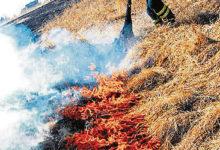 Päästeamet soovitab korrastada maavaldusi sügisel