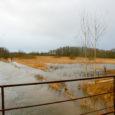 Alates tänavu juunist mõõdavad Eesti kõigis hüdromeetriajaamades jõgede ja järvede veetaset automaatjaamad, viimasena hakkas automaatjaam tööle Saaremaal Lõve jõel Uue-Lõve hüdromeetriajaamas. Jaamad mõõdavad veetaset, veetemperatuuri, õhutemperatuuri ning sademeid. Lisaks tehakse […]