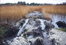 Harjumaa mees rajab omavoliliselt teed läbi Nasva jõe