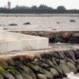 Torgu vallavalitsus andis kasutusloa vallavolikogu esimehe Mihkel Undresti poolt Türju külla rajatud ranna kaitserajatisele, mille kohta keskkonnainspektsioonis on algatatud haldusmenetlus.