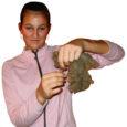 Eesti maalamba ühingu korraldatud esimestel Eesti ketramise meistrivõistlustel laupäeval Kaali külastuskeskuses demonstreerisid noored osalejad oma üllatuslikult häid oskusi nii kedervarrega ketramisel, voki käsitsemisel, kraasimisel kui ka lamba pügamisel.