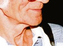 Kuldmikrofoni sai Hubert Velderman