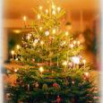 LUTERLIKUD KOGUDUSED TIIRIMETSA 24.12 kl 12 – püha jõuluõhtu jumalateenistus. 28.12 kl 11 – süütalastepäeva armulauaga aasta viimane jumalateenistus. Järgneb kirikukohv Lõmalas. SALME 24.12 kl 13.15 – püha jõuluõhtu jumalateenistus. […]
