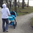 Just nii kaugel ohust oli eile Kuressaare linnapargis lapsevankriga jalutanud ema, kui suur puuoks mitme meetri kõrguselt alla kukkus.