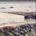 Torgu vald ei tunnista kehtetuks Penumetsa II maaüksusele rajatud rannakaitseehitisele antud kasutusluba, vaatamata sellele, et keskkonnainspektsioon on vastavasisulise ettepaneku teinud.