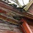 Kuressaare Allee tänav 2 maja elanikud on pöördunud Kuressaare Elamute Hoolduse poole probleemiga, mis puudutab maja seisukorda ning eriti selle katuse ja katuseräästa kordategemist.