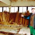 Muhus Piiri külas tegutsev kolmemiljonilise aastakäibega OÜ Muhro registreeriti 1995. aastal. Alustas firma aga juba kaks aastat varem juulikuus, kui esimene rookatus valmis sai. Seega võib suvel 15. sünnipäeva pidada. Firma omanik Mihkel Ling on ise kõrgema haridusega loomaarst, kuigi seda ametit ta suurt pidada ei saanudki, sest 1993. aastal, kui diplom käes, töötasid kolhoosides juba likvideerimiskomisjonid.