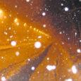 Kuigi ilmajaam ennustab tulevaks nädalaks lumesadu ja talveilma, see siiski saarlasteni ei jõua.