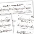 Laupäeval, 29. märtsil täitub Lümanda naiskvartetil 20. tegevusaasta. Tähistame seda meeleoluka ja ülevaatliku kontserdiga Lümanda kultuurimajas. Viimastel aastatel oleme rohkem üles astunud triona, kuid juubeli puhul võtab meie kvarteti neljas liige Aive ette pika reisi Saksamaalt Saaremaale. Niimoodi saab kvartett jälle kokku. Kvartetina oleme teinud Saksamaale ka mitmeid kontsertreise.