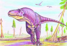 Kas tillukesed putukad tapsid gigantsed dinosaurused?