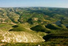 Piia tervitas kevadet Türgis, Priidu aga Jordaanias