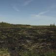 Viimase nädalaga väga kiiresti kasvanud maastikupõlengute arv viitab sellele, et Eestis on alanud tuleohtlik aeg. Päästeameti peadirektori käskkirja järgi algab tuleohtlik aeg kogu Eesti territooriumil 20. märtsist. Tuleohtlikul ajal võib […]