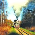Reedel Lihulas peetud ettevõtluspäeval esinenud Janek Vipre, vaibatootja Narma omanik, soovitas Läänemaa elavdamiseks taastada Virtsu raudtee, kirjutas Lääne Elu. Vipre märkis, et raudtee taastamine oleks Läänemaale tähtis, kuid seni kõne […]
