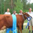 Kaunimate visside näitus-šõul Upal võitis neljakümne osalenud lehma hulgast Saarte vissi tiitli kolmeaastane Eesti punast tõugu lehm Klaabu Salme POÜ-st. Tänavu 15. mail esmakordselt poeginud piimaandjat esitles Salme POÜ juht Raimond Ellik.
