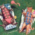 Kuna eestlased on põhjamaine rahvas, kasutame me suvel võimalust särava päikese käes viibida võimalikult palju ära. Päike on meie igapäevane sõber ja on kahju, et ta näitab end rohkem ainult suvel.
