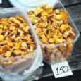 Tänu kehvale seeneaastale on Saaremaa kukeseente hind kerkinud lakke. Kuressaares maksab seenekilo 200–300 krooni.