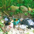 Karujärve vahetus läheduses asuv Kase puhkeküla hoiab oma prügi aiaäärse metsatuka all, et seda ise sorteerida, kuna puhkeküla juhataja Mel De Oliveira ei usalda Saaremaa jäätmekäitluse süsteemi.