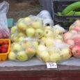Eestis tänavu õunte kokkuostust loobunud AS-i Põltsamaa Felix ostujuht Priit Pärs ütles Oma Saarele, et Saaremaal on tänavu küll hea õuna-aasta, kuid mahlapressi töölepanekuks vajalikke koguseid ei õnnestuks siiski kokku saada.
