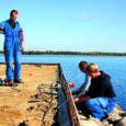 Muhu saare lõunarannik saab järgmisel suvel esimese külalissadama, kui omanik avab purjejahtidele aastaid varjusurmas olnud Muhu Lõunaranna sadama.