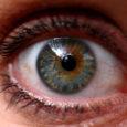 Kuressaare haigla otsib uut silmaarsti asendamaks kord nädalas Saaremaal patsiente vastuvõtvat ja mandrilt käivat tohtrit, kes lõpetab töö novembrist. Saarlaste silmi ravib igapäevaselt praegu vaid üks silmaarst, doktor Marta Virves.