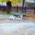 Möödunud nädalal avastasid prügivedajad Uus tänav 27 parklas asuvast paber- ja pappjäätmete kogumiseks mõeldud prügikonteinerist televiisori, koera väljaheiteid ja muud olmeprahti.