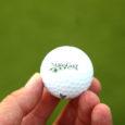 27. oktoobril lõppenud AS-i Saaremaa Golf tegevjuhi konkursile laekus 11 sooviavaldust.