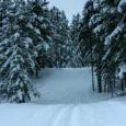 Alates eilsest on Karujärve tervisekeskuses avatud nii klassika kui ka vabatehnika suusarajad. Pikima raja pikkuseks on 10 km. Radade ettevalmistajad ja hooldajad on Anu Metsniit, Aare Saar, Ülo Vevers ja Saaremaa omavalitsusliit.