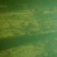 Merearheoloog Vello Mäss plaanib augustis tulla koos meeskonnaga otsima Saaremaa ümbruse vetes hukkunud laevade vrakke. Eesti tuntuima allveearheoloogi Vello Mässi sõnul kavatses meeskond tulla juba juunis Liivi lahte uurima ja […]
