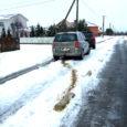 Eile päeval nõudsid Kuressaares Tuule tänavat poolitavad betoon-elemendid uue ohvri, kui vasakpööret sooritanud autojuht ei märganud lumega kaetud tõkist ning sõitis puruks oma auto karteripõhja.