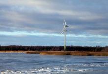 Sõnajalad leidsid Nasva tuulegeneraatoritele uued asukohad