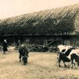 Hiljuti aastaseks saanud Lümanda valla muuseum sai Kultuurkapitali Saaremaa ekspertgrupilt 2000 krooni toetust vanadest piltidest fotonäituse korraldamiseks.