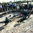 """Eesti arheoloogia """"sajandi leiuks"""" tituleeritud Salme muinaslaevast ja selle avastamisest valmib ka film. Autoritel on esialgne stsenaarium valmis ning praegu püüavad nad filmi tarbeks raha leida."""