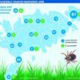 Puugihaiguste leviku poolest tuntud Saaremaal on elanikud hakanud end senisest enam vaktsineerida laskma.
