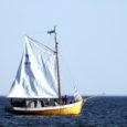 """Laupäeval Nasval toimunud merekultuuripärandi projekti """"Väinameri 2009"""" arutelul teavitasid entusiastlikud saarlased oma kavatsustest alustada lähiajal koguni kolme puust purjepaadi ehitamist."""