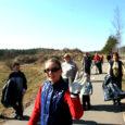 Laupäeval koristati Kuressaare viiest piirkonnast ära mitu tonni sodi, mis oli talvega kogunenud.