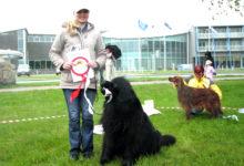 Saaremaa ilusaimaks koeraks valiti Donna
