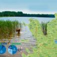 Jaapan on tõusva päikese maa, Soome – tuhande järve maa. Aga Eestimaalgi on kaugelt rohkem kui tuhat järve ning Saaremaad saaks turistidele tutvustada ka kui saja järve saart.