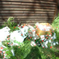 Riigimetsa kaitsja Anu Metsniit usub, et teisipäeval Loode tammiku parklasse mitu kilekotitäit tühjaks joodud viinapudeleid vedanud lurjus on kõva obaduse vastu pead saanud ja mõistuse kaotanud.