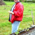 Salme valla õunakasvataja ning puuviljade maaletooja Riho Kadastik on teadaolevalt ainus aiapidaja Eestis, kes kasvatab maasikaid maapinnast meetri kõrgusel rennides.