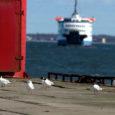 Majandus- ja kommunikatsiooniministeerium teatas vastuseks Saaremaa ettevõtjate liidule (SEL) seoses parvlaevaühendusega, et nõudlust rahuldavate lahenduste leidmine on parasjagu käsil. Ministeeriumi transpordi asekantsler Ahti Kuningas märkis oma vastuskirjas SEL-ile, et nad […]