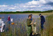 Noored looduseuurijad olid preemialaagris Kipi-Koovil